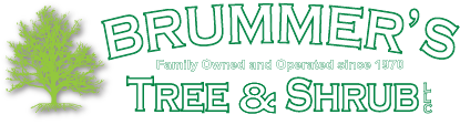Brummer's Tree & Shrub Logo