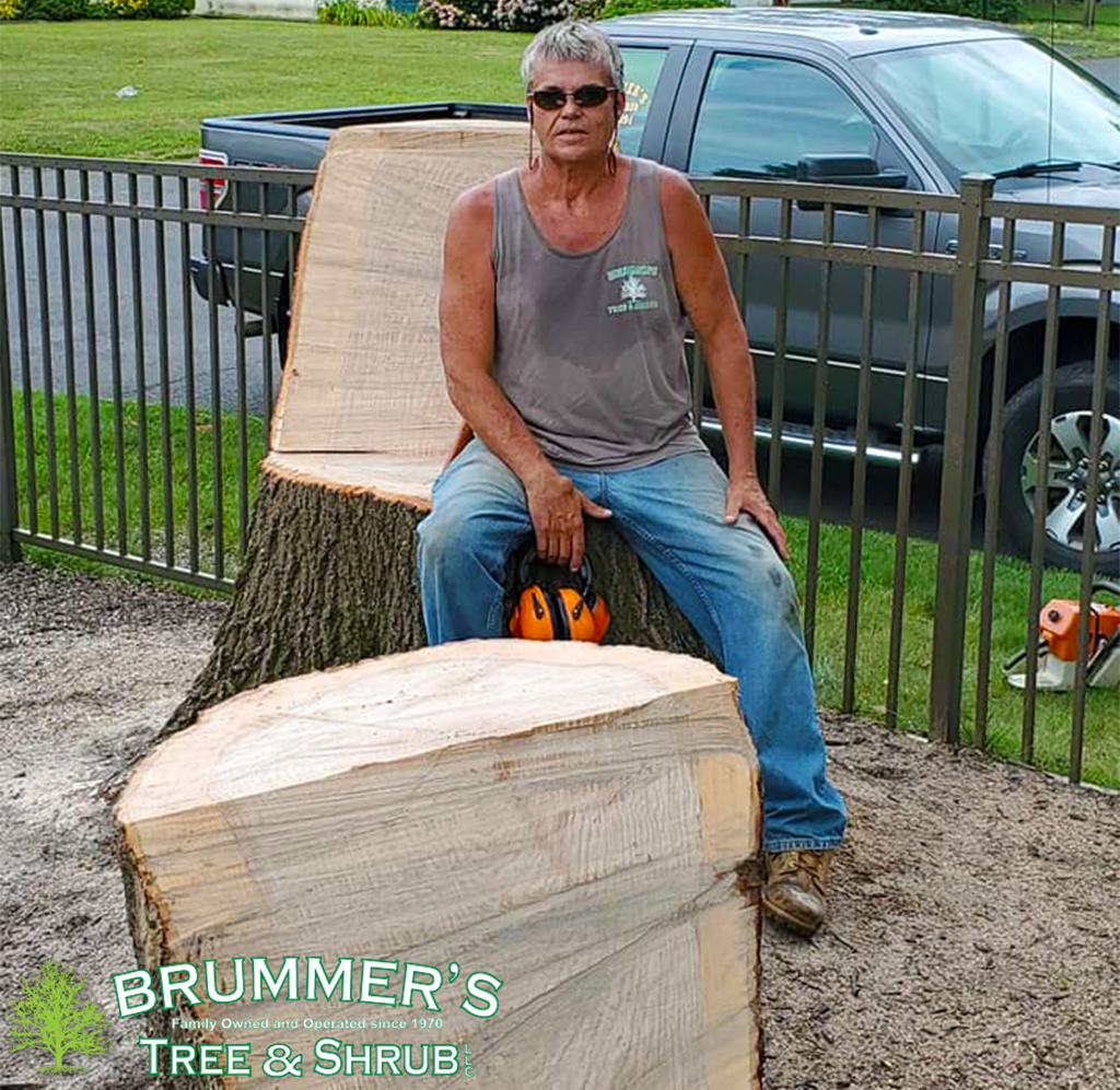 brummers-stump-3