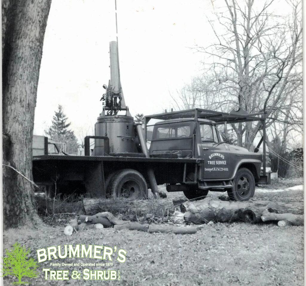 brummers-tree-service-2